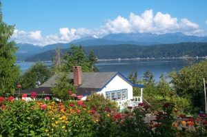 Cottage summer view