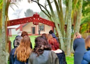 Te Kopua Marae, Waikato